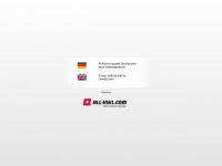 brummi-wasch.de Webseite Vorschau