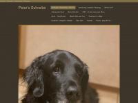 peters-schreibe.ch Webseite Vorschau