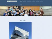 bergschule-singen.de