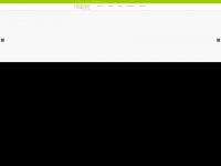 blizzard-webdesign.de