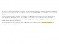 brielmaier-baumaschinen.de