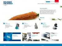 brunner-anliker.com