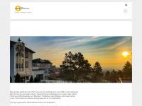 amsonnenhang.net Webseite Vorschau