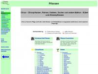 kuebelpflanzeninfo.de