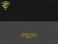 harmonikafreunde-lauf.de