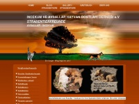 strassentiere-incekum-avsallar.com