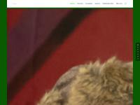 zunftobe-grenzach.de Webseite Vorschau