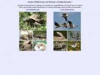 schildi.homepage.t-online.de