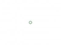 physiotherapie-krankengymnastik.de Webseite Vorschau