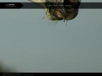 marie.kaeufler.net