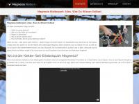 magnesia-klettern.de