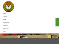 sg-boennigheim.de