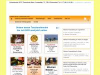 tanzschule-beier.de