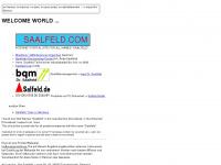 saalfeld.com