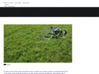 thurgauerzeitung.ch