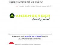 1a-anzenberger.com Webseite Vorschau