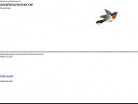 darlehensrechner.net Webseite Vorschau