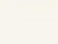 amonsteinmetz.de Webseite Vorschau