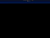 muenchner-ruhestoerung.de Webseite Vorschau