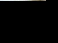 die-abdichter.de