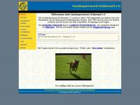 hsv-groebenzell.de
