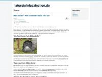natursteinfaszination.de