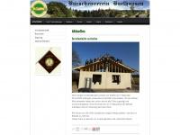bv-harthausen.de Thumbnail