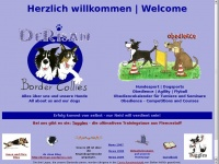 Derisan-bordercollies.de