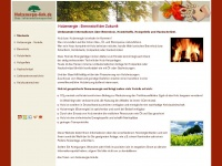 Holzenergie-link.de