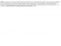 d-m-o.com Webseite Vorschau