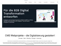 cms-webprojekte.de