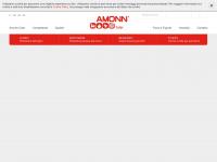 amonncolor.com Webseite Vorschau