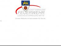 feuerwehr-erkelenz-mitte.de