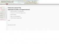 bodeninstitut.de