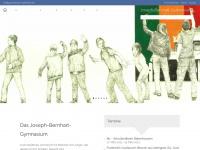 gymnasium-tuerkheim.de