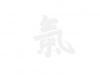 ki-aikido-berlin.de Webseite Vorschau