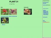 plant21.de