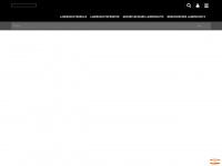 uvex-laservision.de Webseite Vorschau