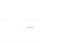schettler-consulting.de