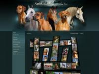 Animal-art.org