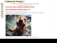 tierischfit.com