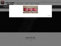 fairplay-teamsport.de