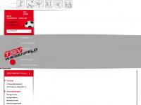 tsv-wiesenfeld.de