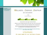 wellness-energie-zentrum.de