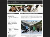foxterrier-drei-eichen.com
