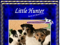 littlehunter.de