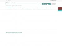 axing.com