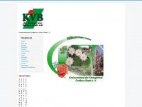 kvbkg-cottbus.de Webseite Vorschau
