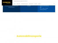 dummeyer.de