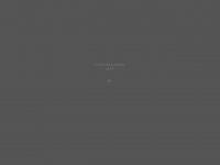 2high-ballooning.de Webseite Vorschau